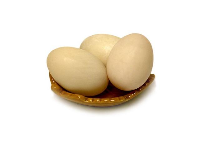 خواص و تاثیر تخم اردک بر سرطان