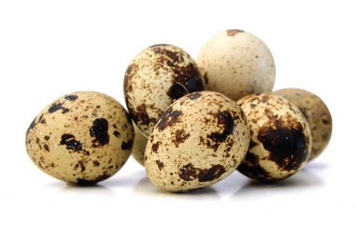 خواص تخم کبک و ارزش غذایی شگفت انگیز آن