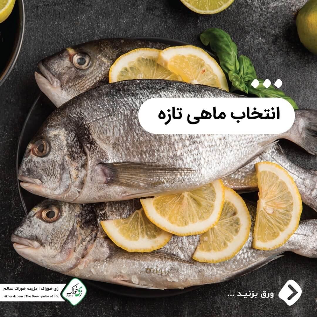 انتخاب ماهی تازه